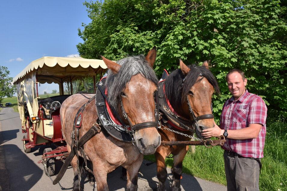 René Liebscher kann seine Kaltblüter Benno und Moni wieder einspannen, um mit Gästen auf Tour durch das Osterzgebirge zu gehen.