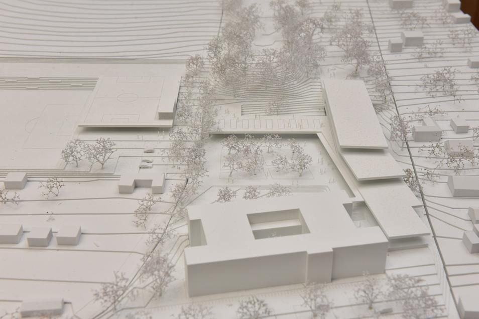 So sieht der grobe Entwurff aus: Im Vordergrund der Altbau, hinten rechts die Grundschule und links davon die Sporthalle mit Spielfläche auf dem Dach. Daneben kommt noch ein Sportplatz.