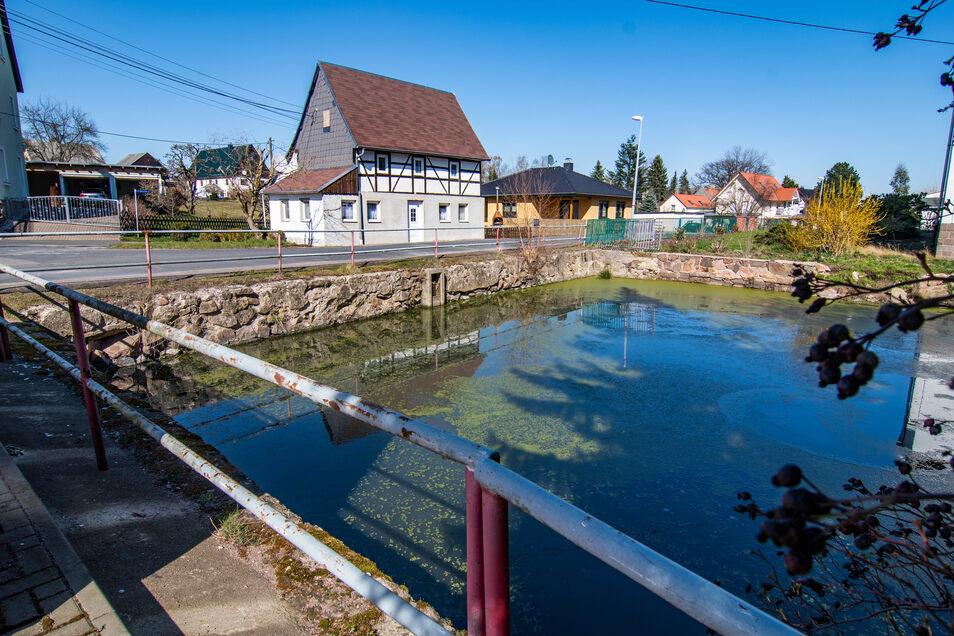 Die Löschteiche in Reichenbach müssten ersetzt beziehungsweise saniert werden. Die Planung dafür geht die Kommune in diesem Jahr an. Auch um Förderung bemüht sie sich.