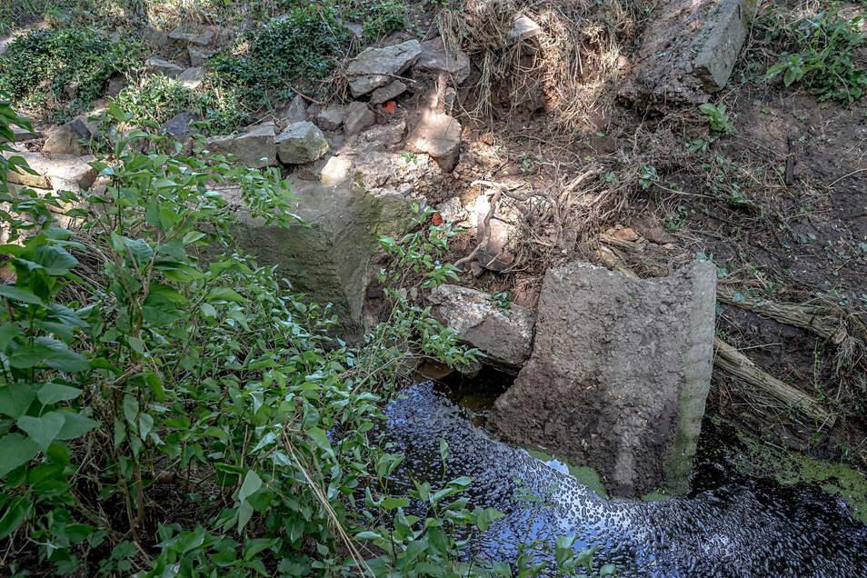 Ein Blick auf den Jordanbach in Bautzen. Angeschwemmtes Material sorgte bereits letztes Jahr unter anderem in der Nähe des Pflegeheimes in der Seidau für Probleme.