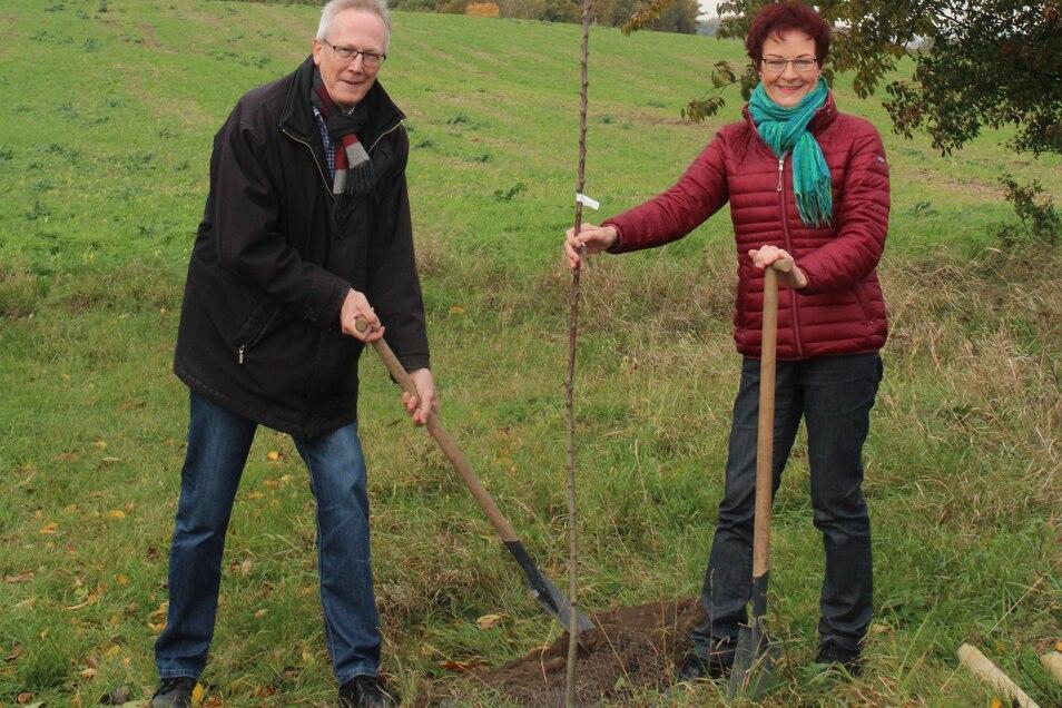 Michael Schlitt und Regina Risy beim Pflanzen der Apfelsorte.