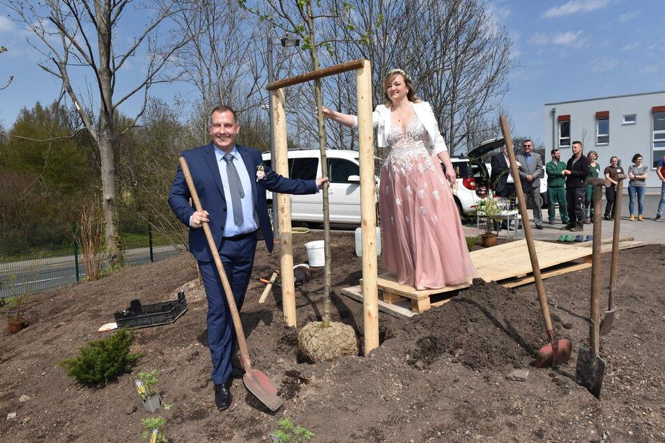 Natur und Stein möchte in Freital Wurzeln schlagen. Deshalb pflanzten Vize-Chef Jörg Merkert und Michaela Merkert anlässlich ihrer Hochzeit in dieser Woche einen Baum.