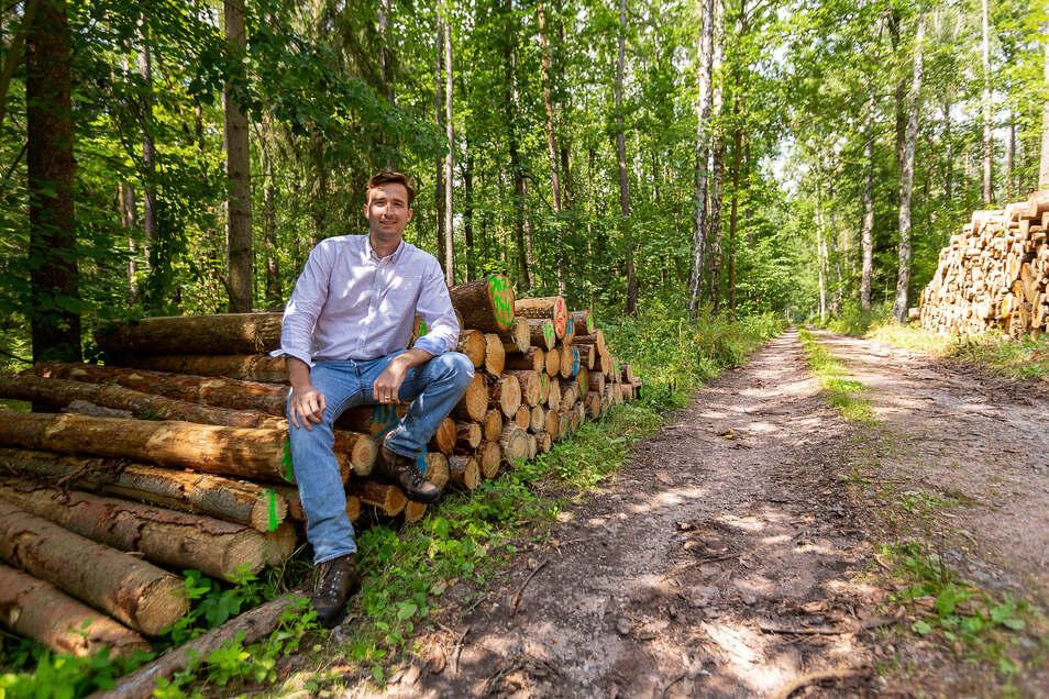 Johannes von Hertell bewirtschaftet 600 Hektar Wald. Damit ist er einer der größten Privatwaldbesitzer im Landkreis Sächsische Schweiz-Osterzgebirge.