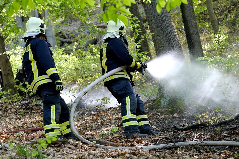 2019 musste die Meißner Feuerwehr besonders oft ins Gebiet der linkselbisch gelegenen Hohen Eifer ausrücken. Mit diesen Verhaltensregeln lässt sich das verhindern.