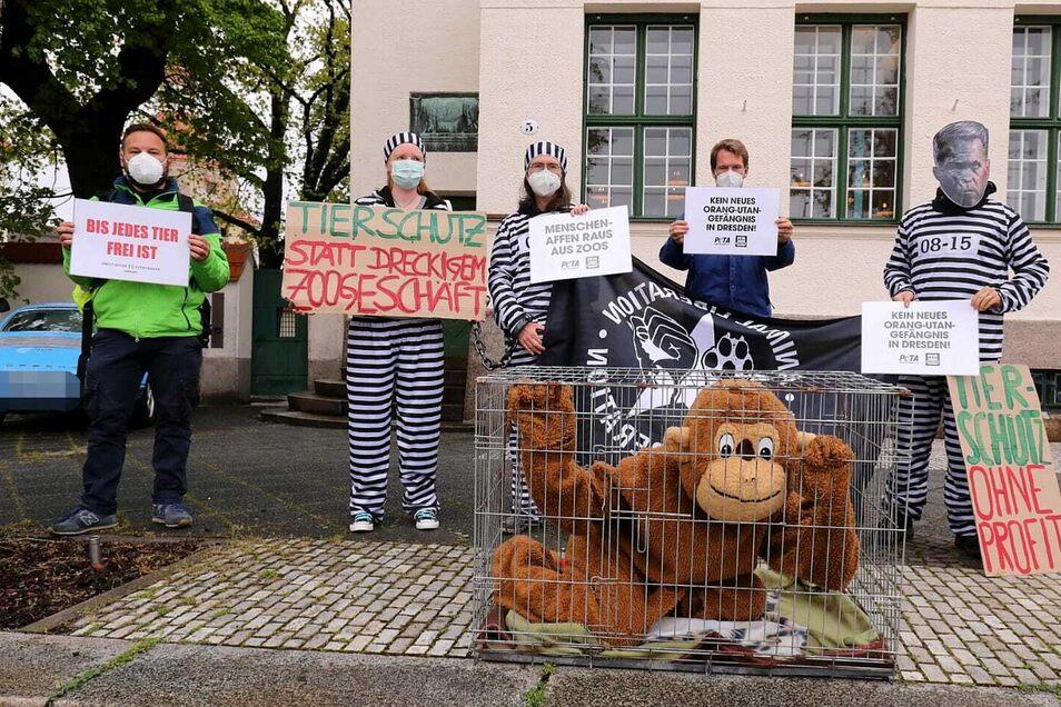 Ein Aktivist in einem Affenkostüm ließ sich in einen Käfig sperren