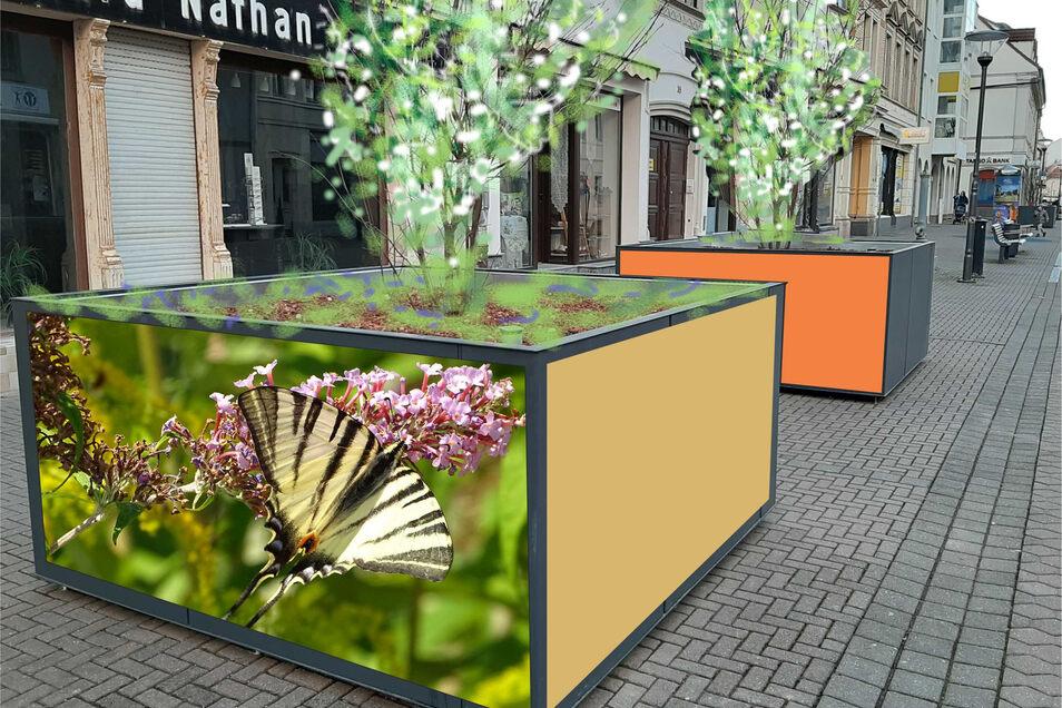 Tiermotive statt graue Fläche? Die Seiten der Pflanzkübel entlang der Riesaer Hauptstraße könnten ähnlich wie in diesem Entwurf umgestaltet werden, wünscht sich Dieter Nötzoldt.