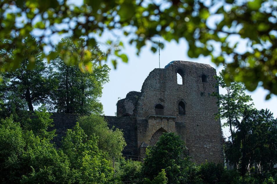 Die Burgruine Tharandt ist eine von fünf künstlichen Ruinen, die wir ausfindig gemacht haben.