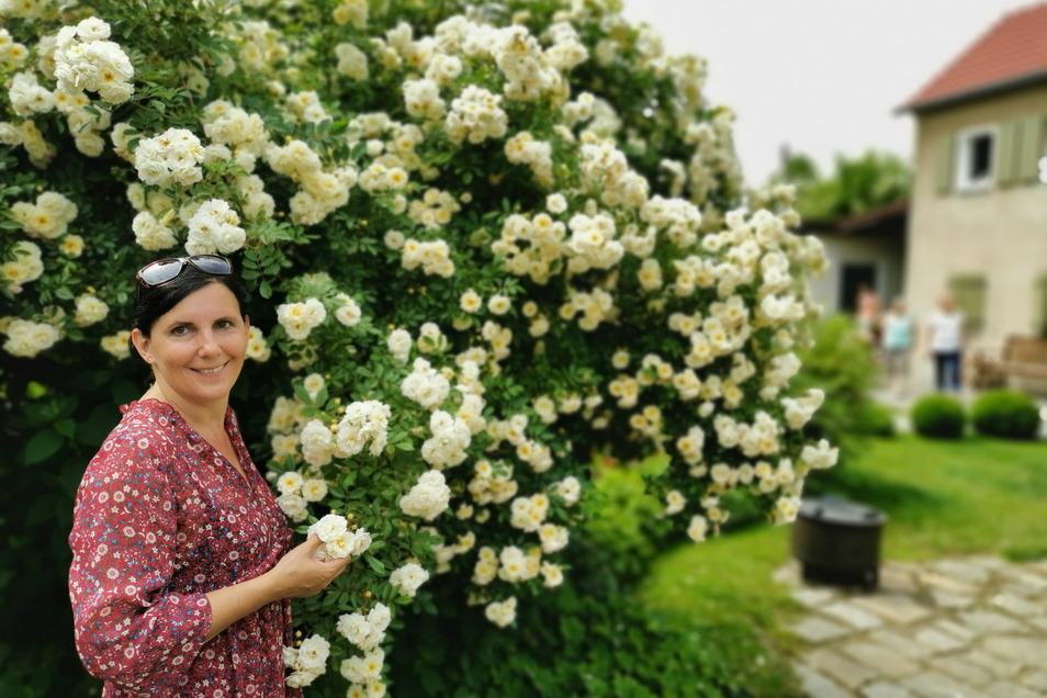 Angelika Röseberg steht hier in ihrem prachtvollem Rosen- und Hortensiengarten in Biehla. Im Spätsommer fertigt sie dann wieder wundervolle Hortensienkränze und verkauft sie.