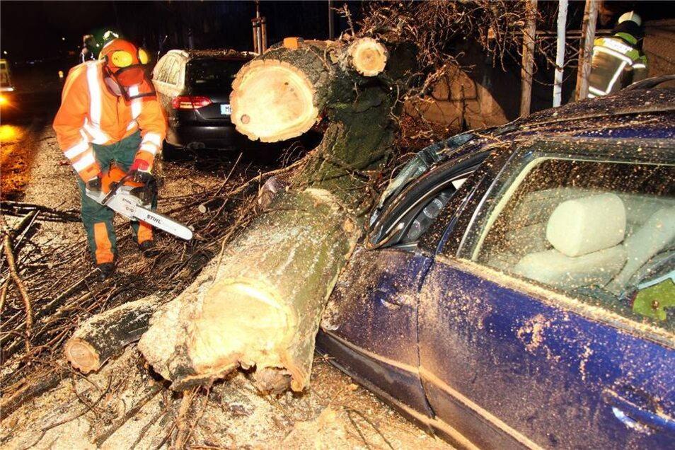 Die Berufsfeuerwehr beseitigte den Baum mit Motorsägen.