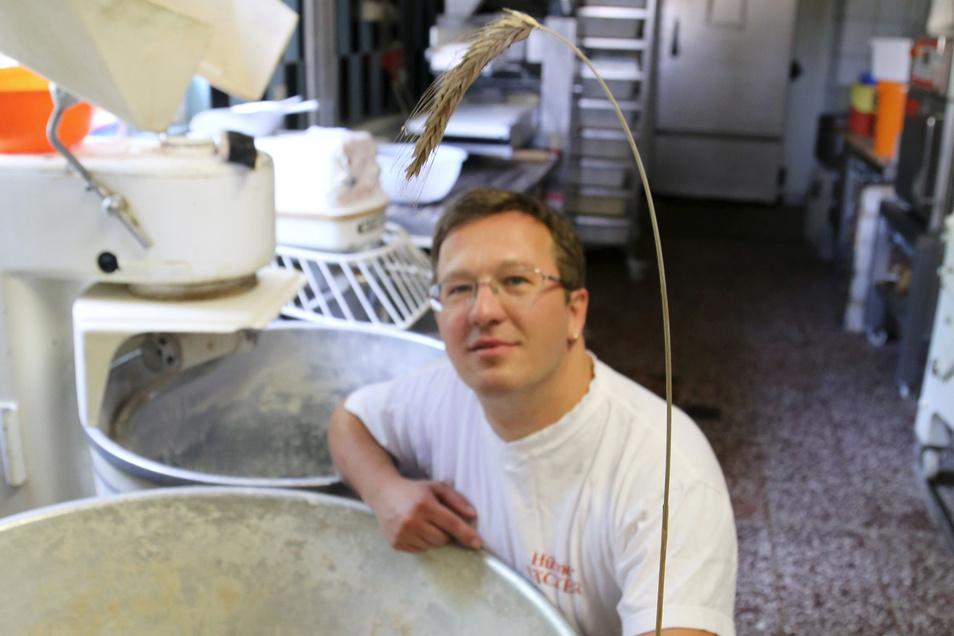 Seit einiger Zeit setzt Bäcker Armin Hübner auf regionale Kooperationen. Ur-Getreidesorten wie den Champagnerroggen lässt er in der Oberlausitz anbauen. Seit diesem Jahr auch den Mohn für seinen Mohnstollen.