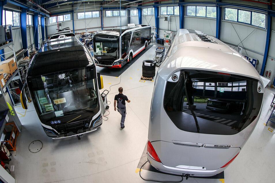 Eine Halle mit Elektrobussen im MAN-Werk im sächsischen Plauen