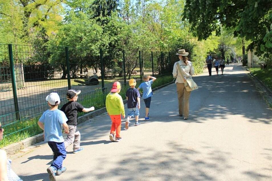 Im Gänsemarsch geht es durch den Zoo - immer der Feder hinterher.