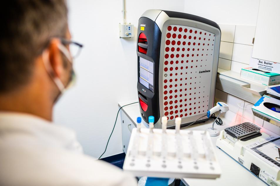 Ein zweites PCR-Testgerät für das Labor hatte das Lausitzer Seenlandklinikum im Frühjahr angeschafft. In einer Woche waren so 1.800 Corona-Tests möglich.