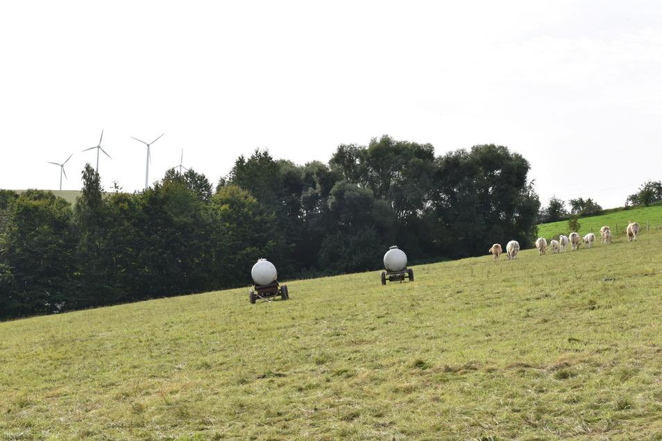 Diese Fläche am Ortsausgang von Hausdorf soll künftig kein potenzielles Bauland mehr sein, sondern weiter landwirtschaftlich genutzt werden.