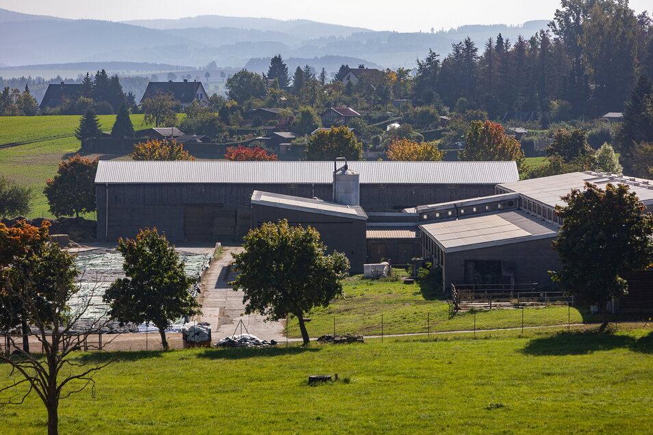 Hier am Jungviehstall im Dippser Ortsteil Seifersdorf ist eine neue Biogasanlage geplant.
