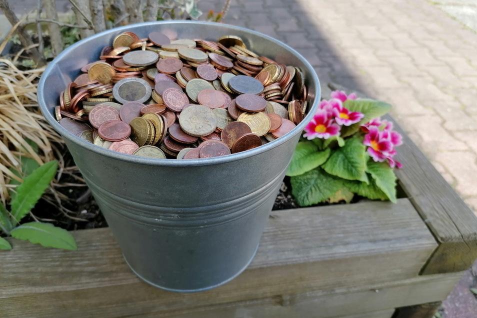 Beachtlich: Rund 400 Euro hat Metallsucher Thomas Starke aus Pirna jetzt zusammengesammelt.