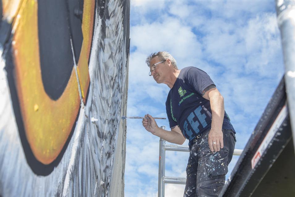 Steffen Neumann hat die Betonwand im Plauenschen Grund neu gestaltet.