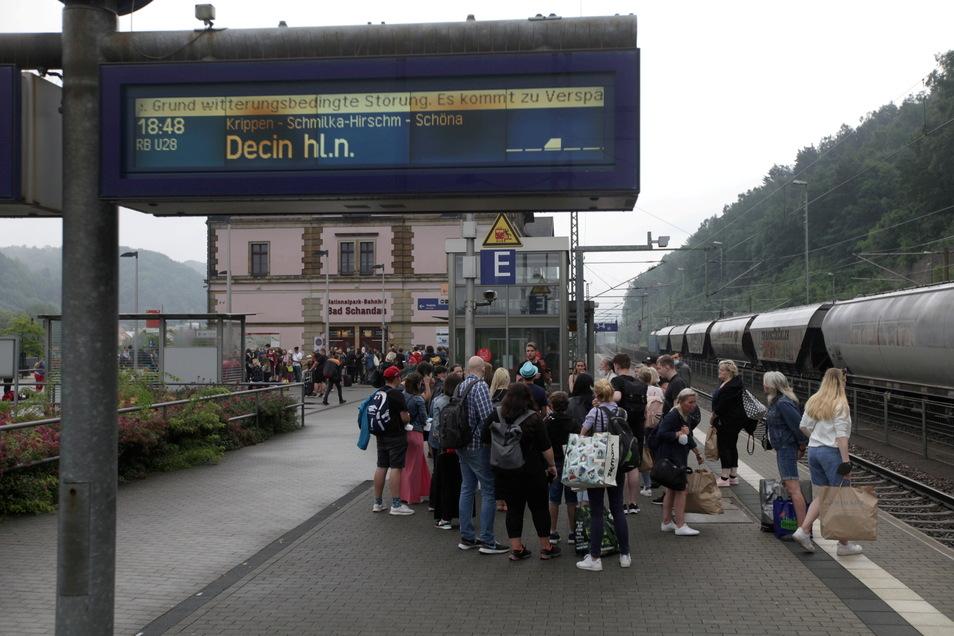 Endstation Nationalparkbahnhof: Einige hundert Bahnreisende strandeten am Sonnabend in Bad Schandau. Nach dem Unwetter wurde die internationale Bahnstrecke Dresden - Prag gesperrt. Die Strecke, die auch eine wichtige Ader für den Güterverkehr ist, ist bis auf weiteres dicht. S-Bahnen verkehrt nur bis Bad Schandau. Schöna und Krippen sind vom Zugverkehr abgeschnitten.
