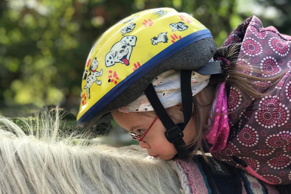 Speziell ausgebildete Pferde können Menschen mit Behinderung helfen. Darum kümmert sich der Verein Heilpädagogisches Reiten.
