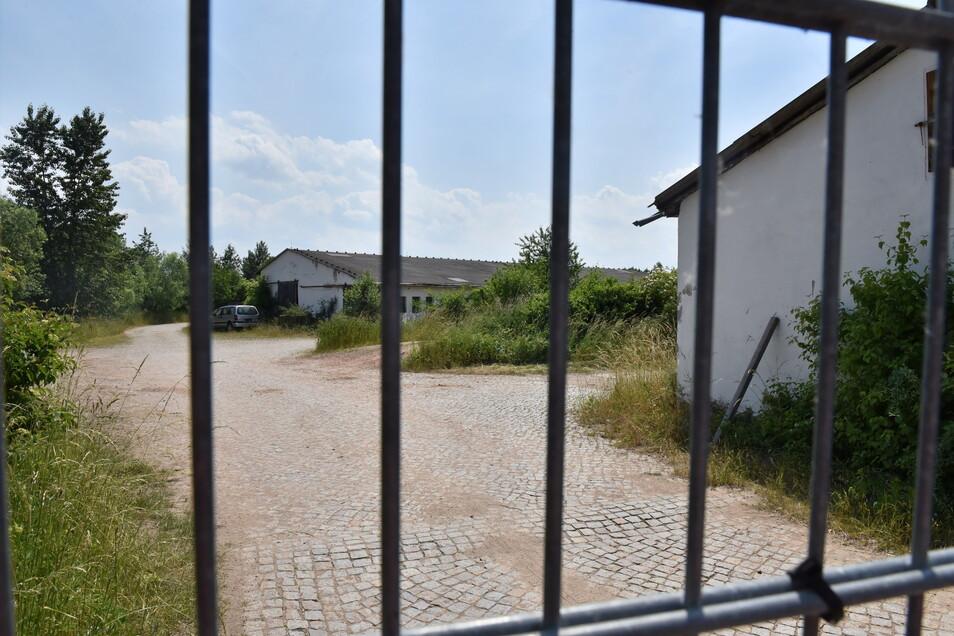 Hinter diesem Zaun an der Horkenstraße in Bannewitz soll ein neues Gewerbegebiet entstehen.