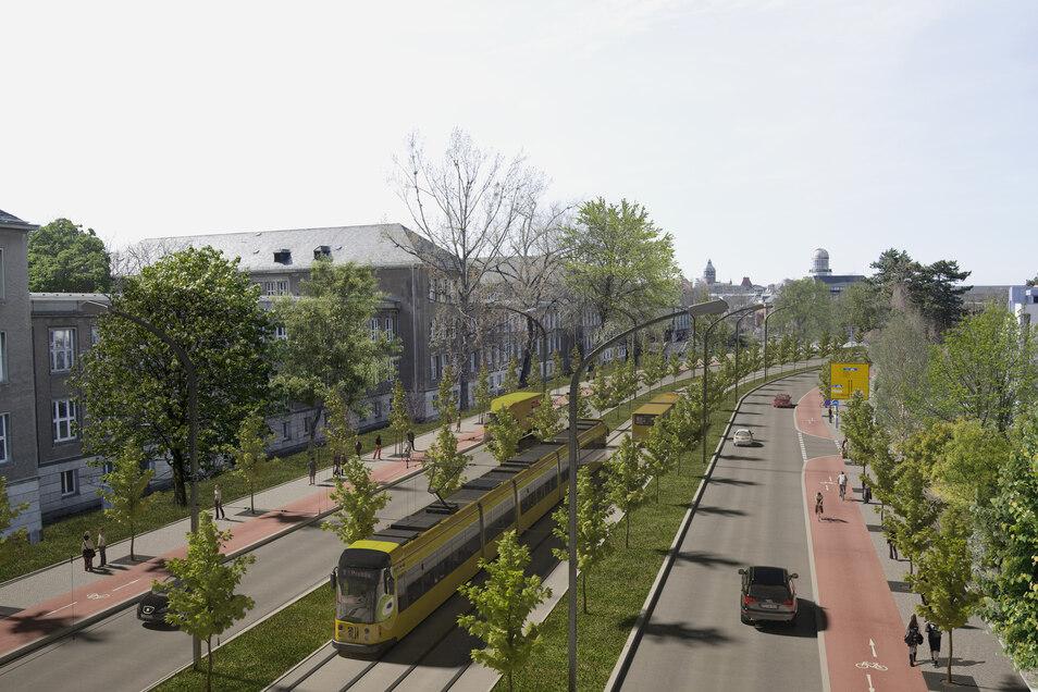 Ein Streit ist um diesen Plan für den Zelleschen Weg entbrannt. Die CDU hätte die Straße gern etwas breiter, die Grünen sind für zwei überbreite Fahrstreifen für Autos.