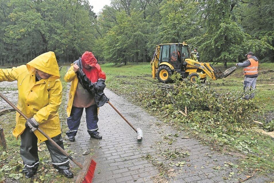 Das Totholz an Wegen und Plätzen zu beseitigen, war bereits im Vorjahr ein Arbeitsschwerpunkt beim Parkseminar und das wird es am kommenden Wochenende erneut sein. Denn auch dieses Jahr war wieder sehr trocken, was der Natur zusetzte.