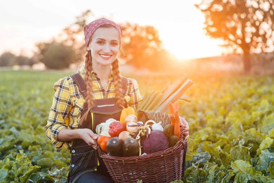32.000 Beschäftigte sorgen dafür, dass in Sachsen produzierte Lebensmittel frisch auf den Tisch kommen. Doch die Branche steht vor Herausforderungen.