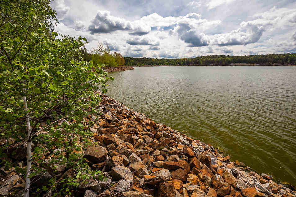 Heide V wirkt recht idyllisch. Das Wasser ist allerdings voller der Gesundheit nicht gerade zuträglicher Schadstoffe.