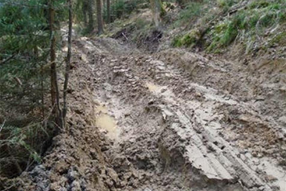 Durch Holztransporte wurde der Weg im Goldbachtal komplett zerstört.