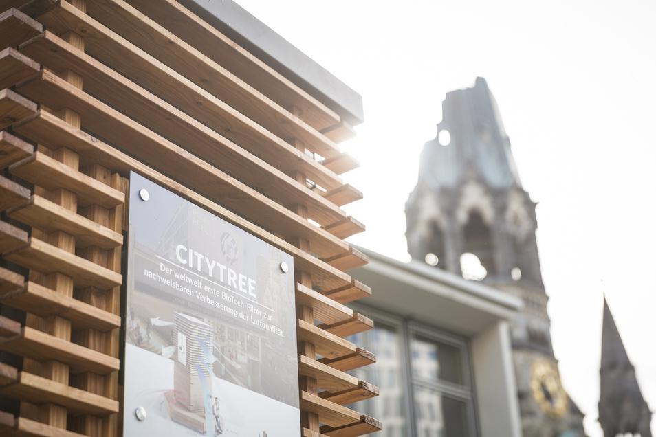 Könnten die City Trees bald auch vermehrt in Dresden stehen? Gespräche darüber laufen.