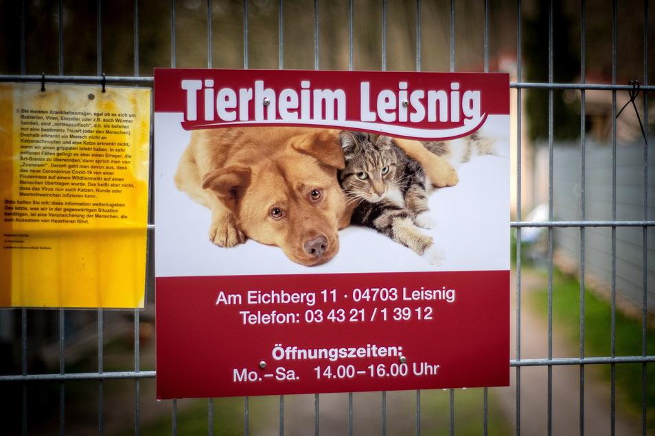 Der Tierschutzverein Leisnig ist auf Unterstützung angewiesen. Nicht nur der Vorstand meint, dass es diesbezüglich vonseiten der Kommune beziehungsweise der einzigen Leisniger Stiftung noch Luft nach oben gibt.