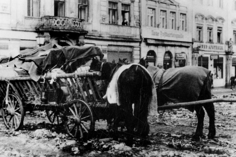 Mit solchen Fuhrwerken wurden 1945 Hab und Gut der Vertriebenen durch Görlitz transportiert. Der Obermarkt verkam damals zu einem Ort von Dreck und Elend.