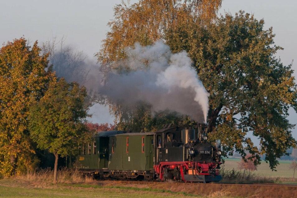 Die Döllnitzbahn verkehrt zwischen Oschatz und Mügeln sowie zu bestimmten Zeiten auch bis nach Glossen.
