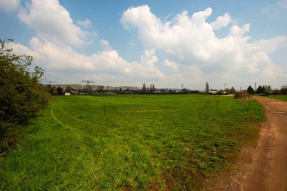 Auf dieser heutigen Weide, östlich neben dem Lößnitzbad, soll der dritte Sportplatz entstehen. Seit Frühjahr 2018 ist die Stadt Radebeul Eigentümer der Fläche. Bis dort gebaut werden darf, ist jedoch noch eine wichtige Hürde zu nehmen.