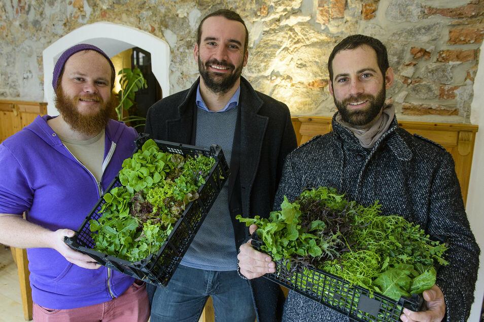 Die Gärtner Martijn Moerman (l.) und Philipp Geltenbort (r.) mit Jörg Daubner und Gemüse der solidarischen Landwirtschaft Rainkost für Unternehmen.