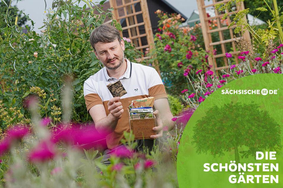 Ordentlich aufgeräumt sind die Sämereien in einer alten Zigarrenkiste. Mit einem Blick weiß Gärtner und Gartenblogger Stefan Michalk, der seine Parzelle in Doberschau bei Bautzen hat, welche Wintergemüse im Sommer noch in die Erde können.