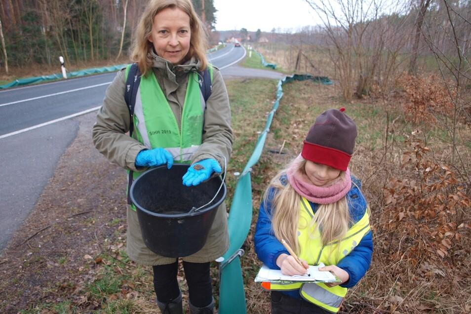 Stolz zeigt Sabine Richter (links) am Amphibienschutzzaun an der S 109 zwischen Leipgen und Steinölsa eine eingesammelte Knoblochkröte und die im Eimer eingefangenen vier Eidechsen, während Tochter Elsa die Tiere registriert.