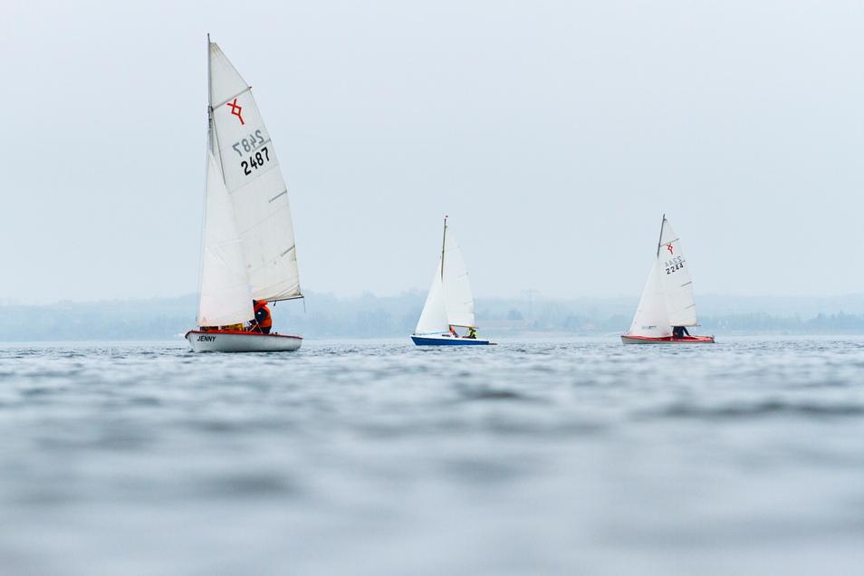 Bis auf wenige Ausnahmen haben alle Segelboote, die den Berzdorfer See bislang nutzen, Hilfsmotoren am Boot. Das wäre passé, sollte die Landesdirektion dem Vorschlag der Stadt folgen.