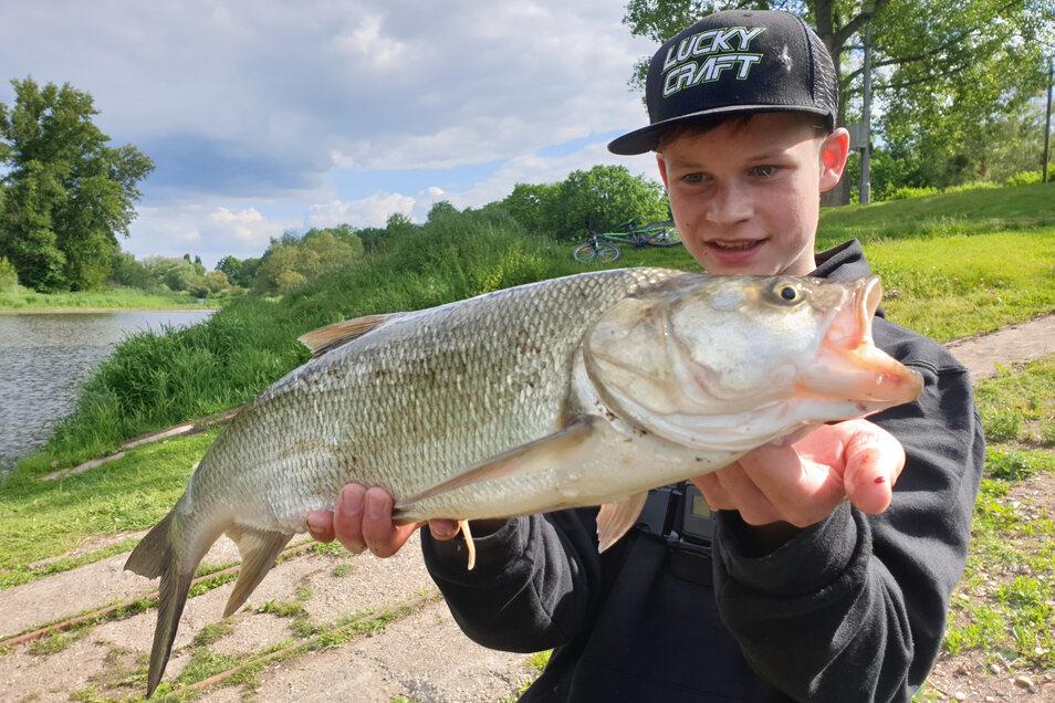 Der 14-jährige Ben mit einem stattlichen Rapfen aus der Elbe.