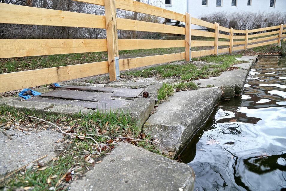 Der Merzdorfer Teich ist sanierungsbedürftig.