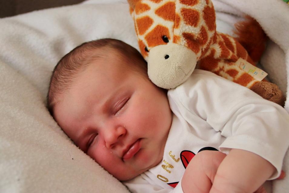 Maxima, geboren am 1. Juni, Geburtsort: Pirna, Gewicht: 3.780 Gramm, Größe: 53 Zentimeter, Eltern: Katharina und Martin Milling, Wohnort: Pirna