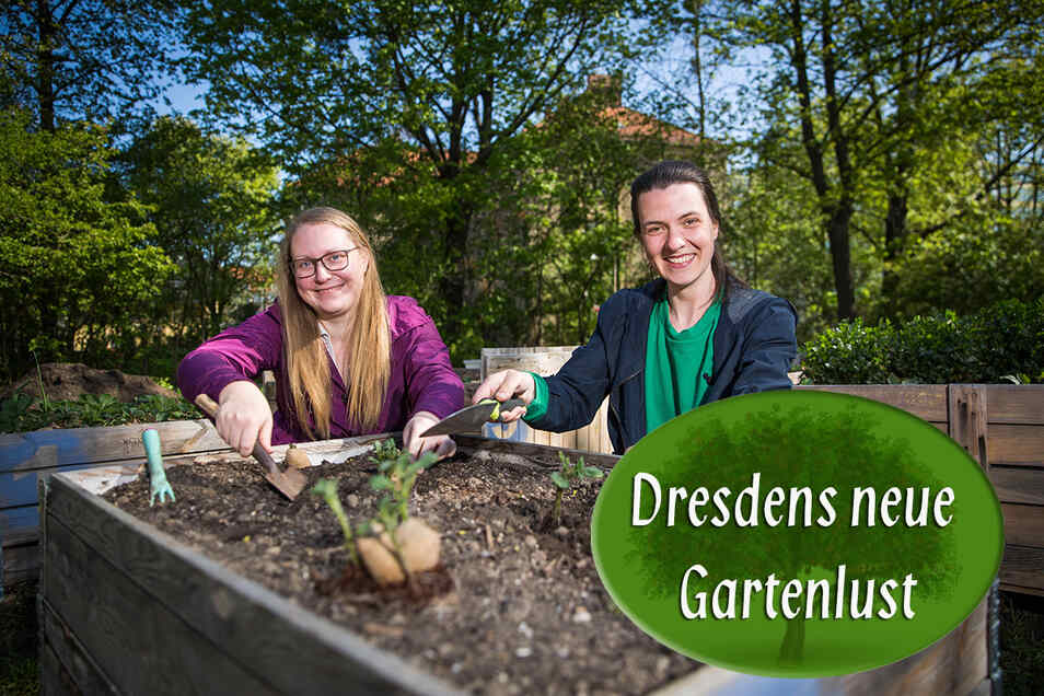 Beatrice Biesold (l.) und Gerda Berger arbeiten im Gemeinschaftsgarten an der Borsbergstraße an den Hochbeeten.