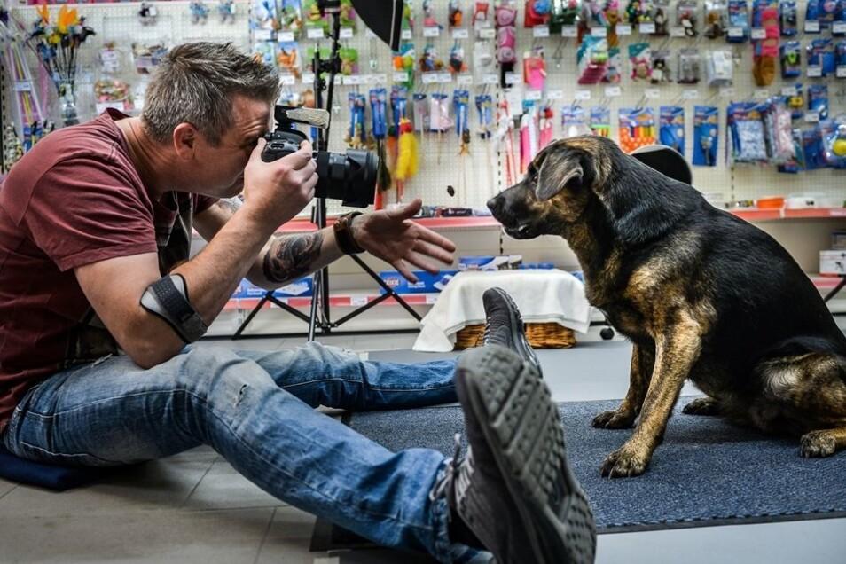 Der Hundekeks fliegt, gleich schnappt Hund Ferry danach, und Christian Vieler fotografiert. So sieht es aus, wenn seine Hundefotos entstehen.