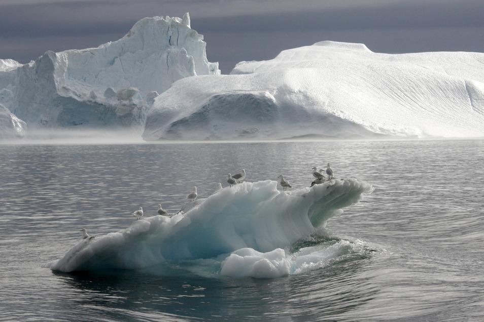 Der Sermeq Kujalleq bei Ilulissat ist einer der schnellsten Gletscher der Welt.