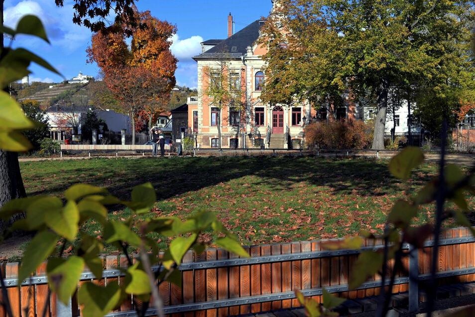 Um die Pflanzen auf den Grünflächen, wie hier dem Rosa-Luxemburg-Platz, zu retten, musste die Stadt in den letzten zwei Jahren deutlich mehr gießen. Nicht nur das Wasser ging ins Geld.