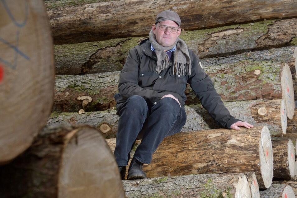 Thomas Westphal ist Vorsitzender des Landesvereins Sächsischer Heimatschutz. Der Verein ist Eigentümer des Landschaftsgartens Seifersdorfer Tal. Dort wurden wegen des Befalls mit Borkenkäfern und der Trockenheit viele Fichten gefällt.