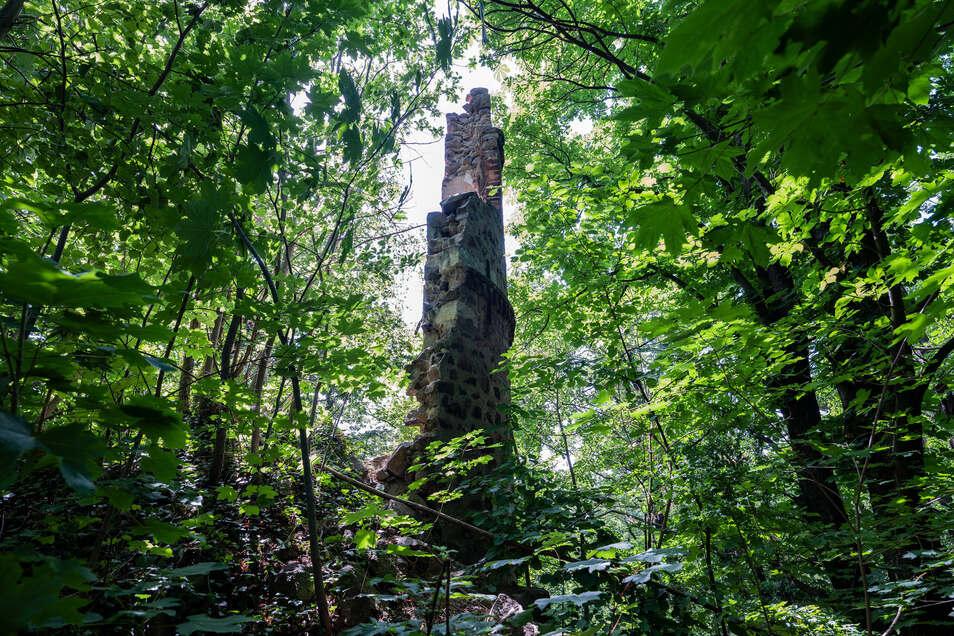 """Im Sanatoriumspark Radebeul befindet sich der """"Mäuseturm"""", das Überbleibsel einer Ruine aus dem 19. Jahrhundert."""