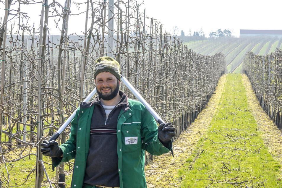 Der Rumäne Lucian Hertel ist derzeit zum Baumschnitt auf den Plantagen der Klosterobst GmbH in Sornzig unterwegs. Er ist eine erfahrene Saisonkraft und war schon oft im Obstland im Einsatz.