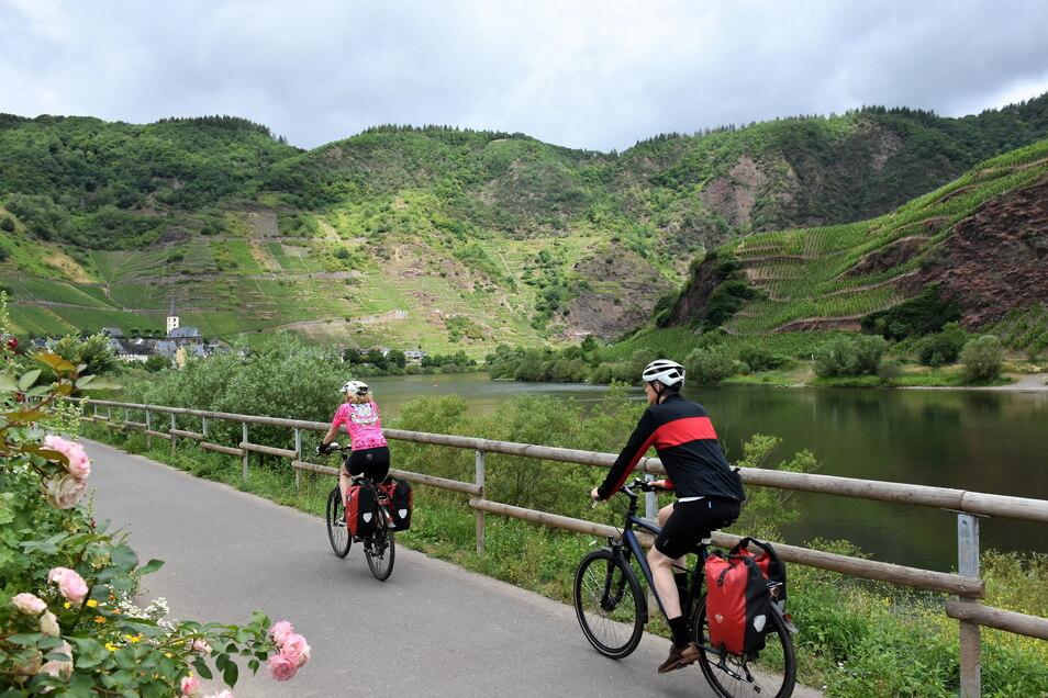 Zwei Superlative auf einen Blick: Der Bremmer Calmont gilt als steilster Weinberg Europas – und die Moselschleife als engste des gesamten Flusslaufs.