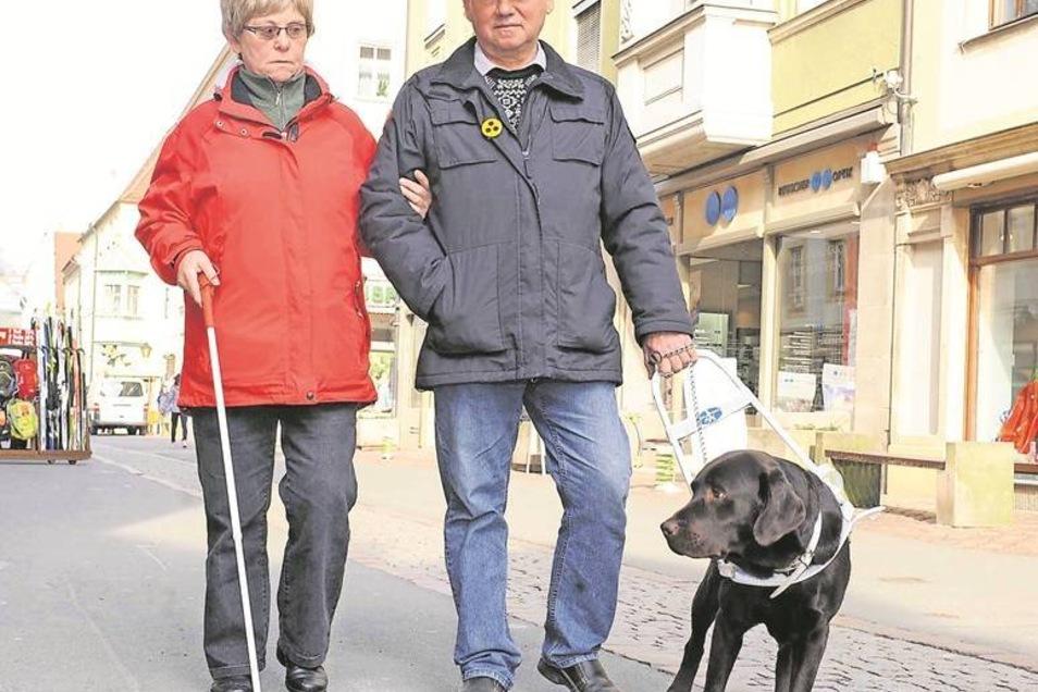 Pilot mit Navigator und Passagier: Blindenführhund Janosch of Brownbank Cottage geleitet Dietmar Tschech (66) und dessen ebenfalls blinde Partnerin Inge Heckerodt (59) über Pirnas Ladenmeile. Fotos: Katja Frohberg (2)